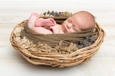 Newborn Wrapped in Basket
