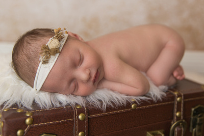 Newborn Baby Girl Posed on Suitcase Captured by Aurora Colorado Photographer Donna Young