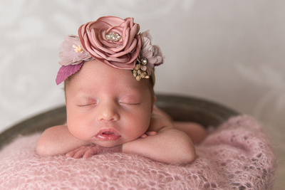 Newborn Baby Girl in Bucket Captured by Aurora Colorado Photographer Donna Young
