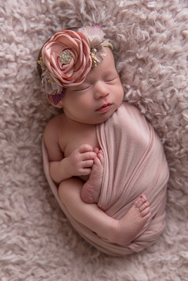 Newborn Baby Girl Wrapped in Pink Captured by Aurora Colorado Photographer Donna Young
