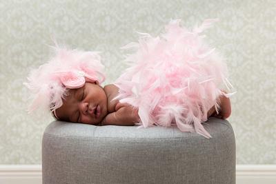 Pink Feathers Newborn Photo
